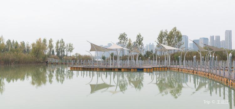 龍子湖風景區1