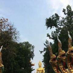 Tian Tan Buddha User Photo