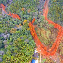 Longqishan Nature Reserve User Photo