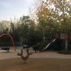 翱星公園用戶圖片