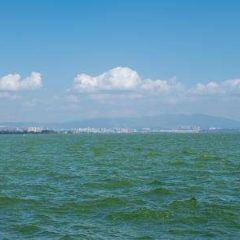 滇池用戶圖片