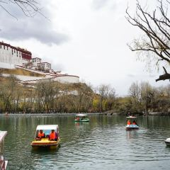 Zongjiao Lukang Park User Photo