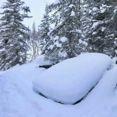 派優特雪山用戶圖片