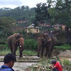 코끼리폭포 여행 사진