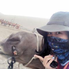 밍사산 여행 사진