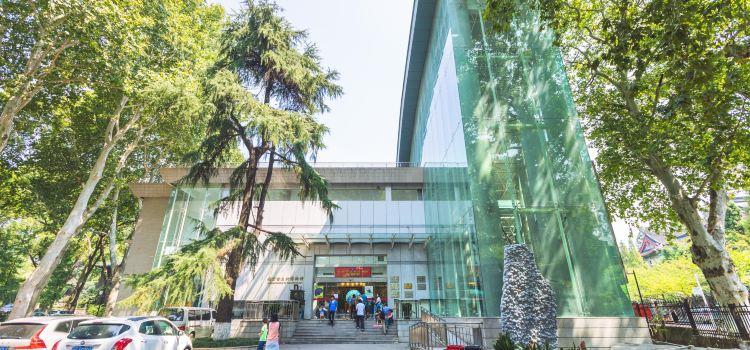 고생물박물관