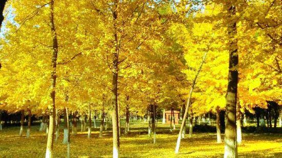 Huaixin Park