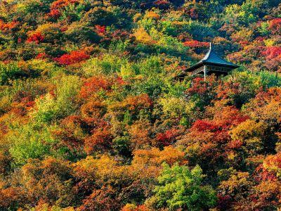 Pofeng Ridge