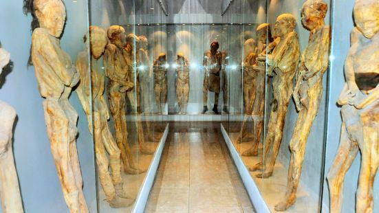 Mummy Museum of Guanajuato (Museo de las Momias de Guanajuato)