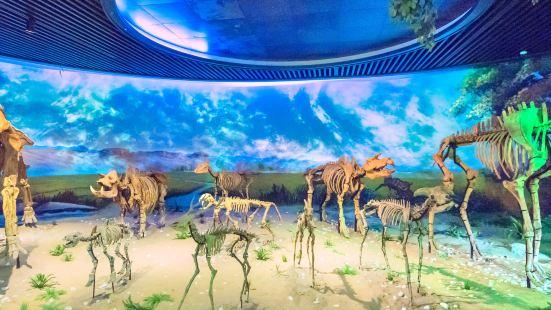 安徽省地質博物館
