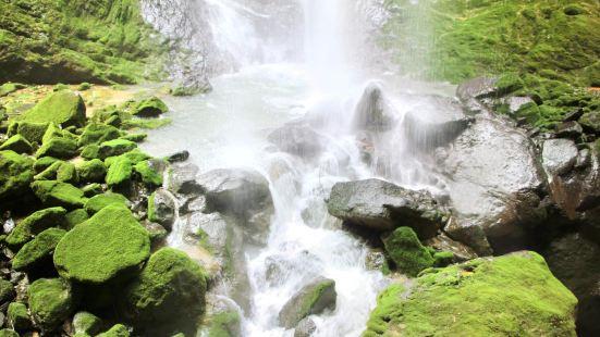Suiyang Kuankuo Shui Yuanshi Forest