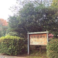 헌정 기념관 여행 사진