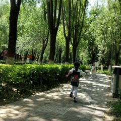 Wanliu Park User Photo