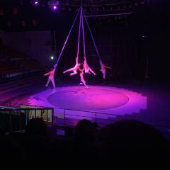 Jeju Circus World User Photo