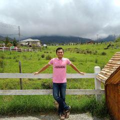 Desa Cattle Dairy Farm User Photo