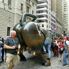 銅牛用戶圖片