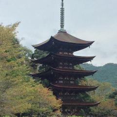 瑠璃光寺 五重塔のユーザー投稿写真