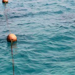 Gouna島用戶圖片