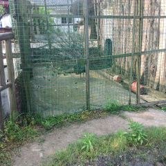 Youjun Ecological Park User Photo