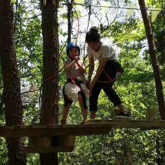 大奇山瘋狂森林主題樂園用戶圖片