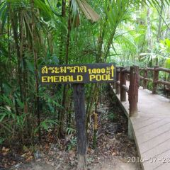 Emerald Pool User Photo
