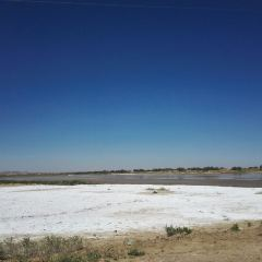 通湖草原用戶圖片