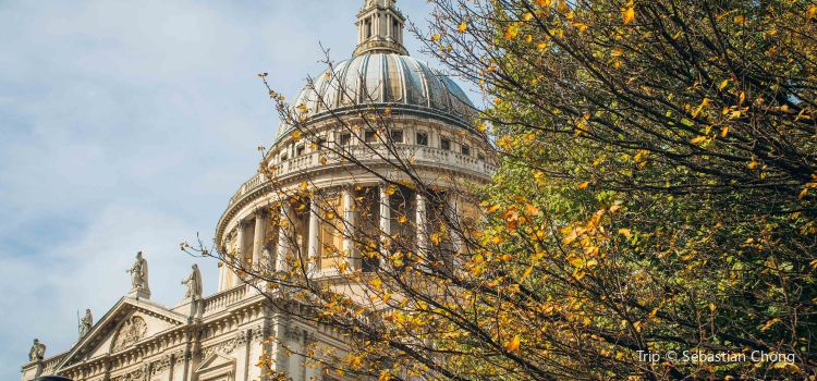 St. Paul's Cathedral3