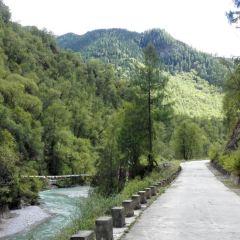 甘肅大峪國家森林公園用戶圖片