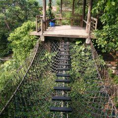 Evergreen Resort User Photo