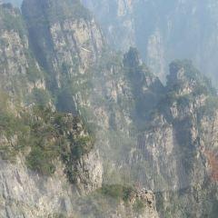 神農山用戶圖片