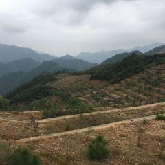 Yaokoucun User Photo
