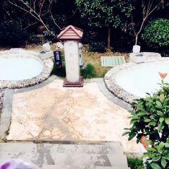 仙華四季溫泉樂園用戶圖片