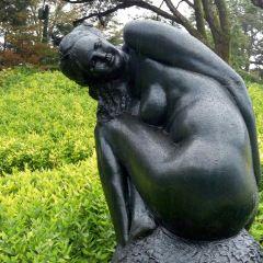 箱根雕刻之森美術館用戶圖片