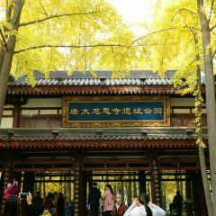 Tangda Ci'ensi Relic Site Park (South Gate) User Photo