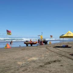 Piha Beach User Photo