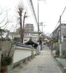 Uemachidaiichi User Photo
