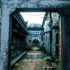 仙都河陽古名居用戶圖片