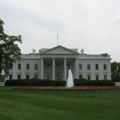 The White House User Photo