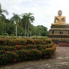 維哈馬哈德維公園用戶圖片