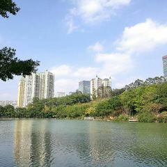 Shimen Forest Park User Photo
