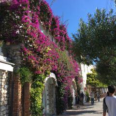 Giardini di Augusto User Photo