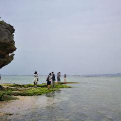 에메랄드 비치 여행 사진