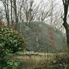 文博森林公園用戶圖片