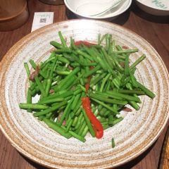 Lao Ma Tu Cai Guan User Photo