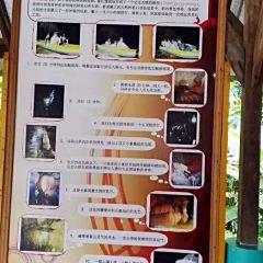 Phung Chang Cave User Photo
