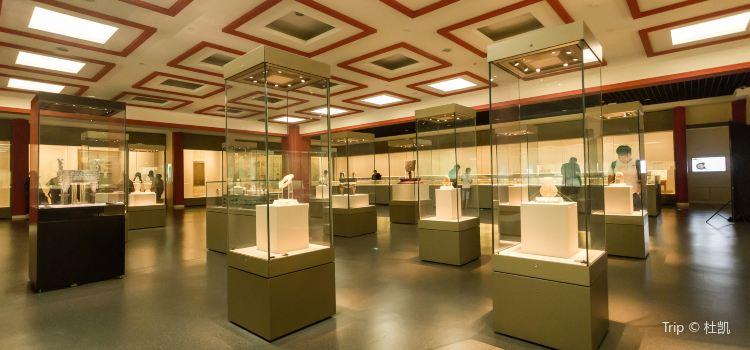 텐진 박물관3