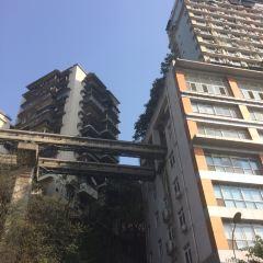 李子壩公園用戶圖片