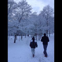 威廉高地公園用戶圖片