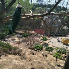 太原動物園用戶圖片