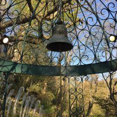 箱根玻璃之森美術館用戶圖片